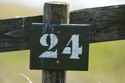 No 24