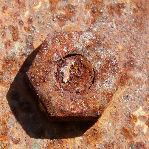 nut old rusty