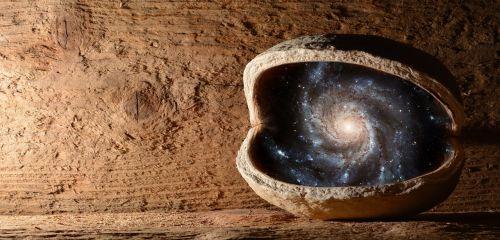 nut walnut universe