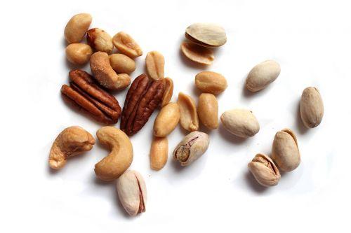 nut seed food