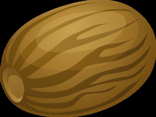nutmeg nut shell
