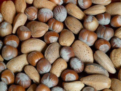 nuts hazelnuts almonds