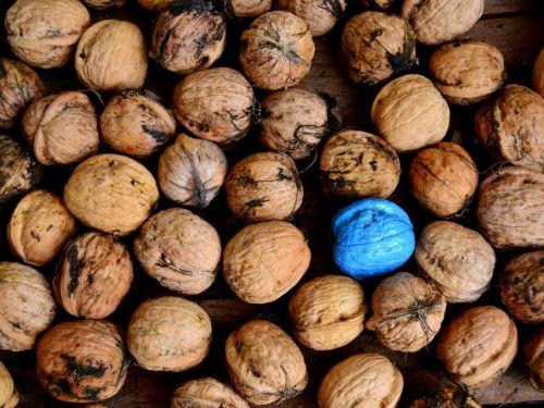nuts blue turquoise