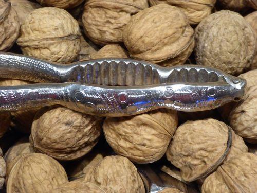 nuts walnuts nutrition