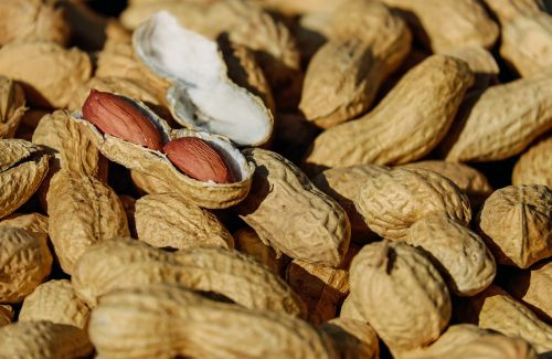 nuts peanut roasted