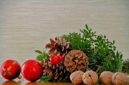 nuts walnut pine cones