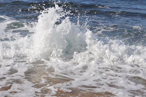 oahu shore sea