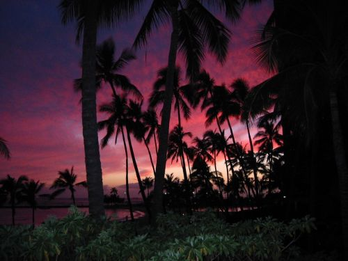 oahu honolulu hawaiian