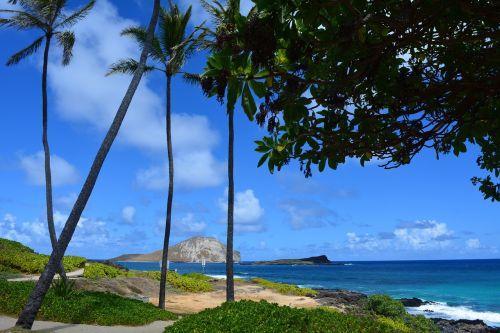 oahu hawaii paradise