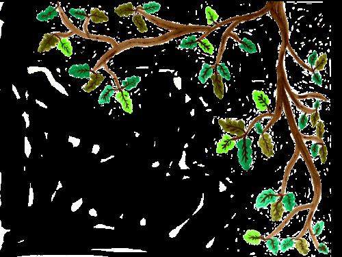 oak branch watercolor