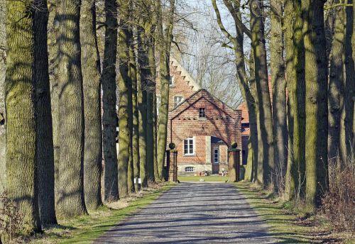 oak avenue hofzufahrt gräftenhof
