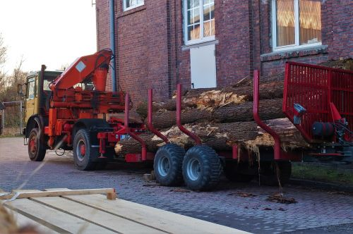 oak wood transport lumber