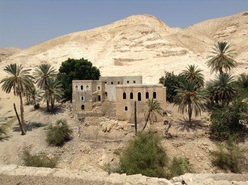 oasis desert israel