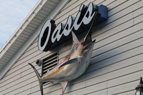 oasis fishing fish