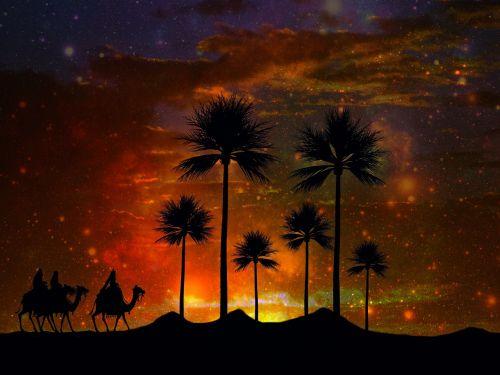oasis desert holy three kings