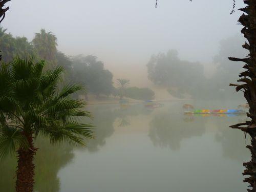oasis fog evaporating