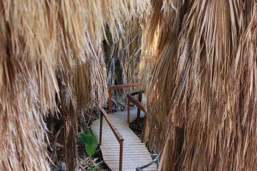 oasis the path footbridge