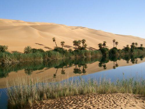 oasis libya desert
