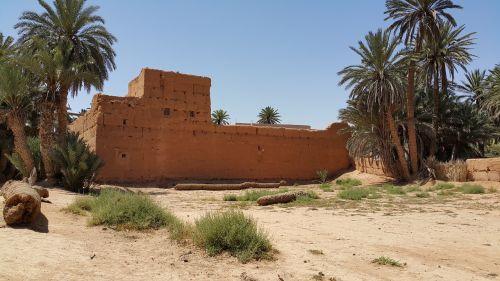 oasis morocco south