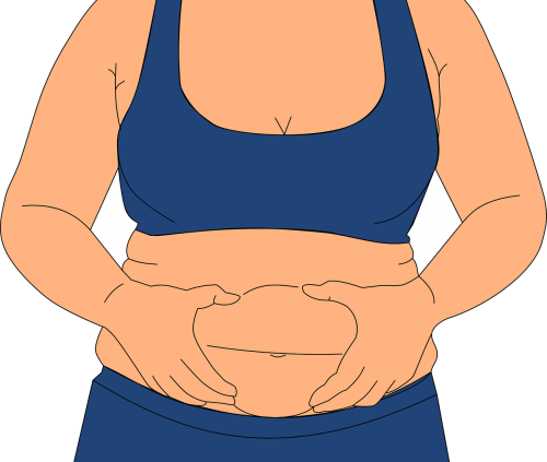 obesity fatness love handles