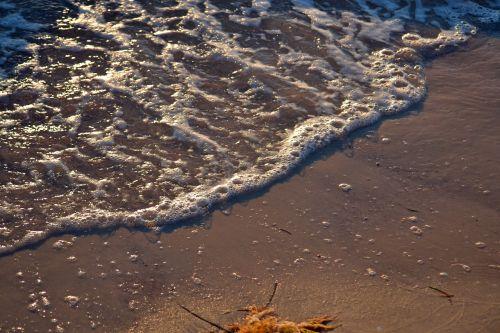 ocean wave shore