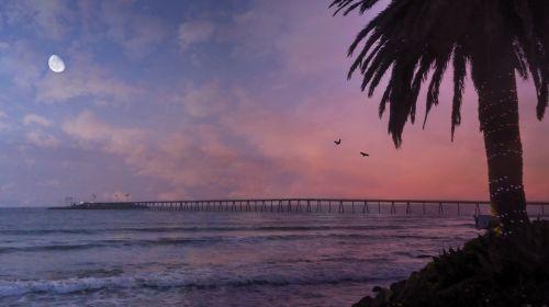 papludimys, jūra, saulėlydis, tropinis, vandenynas, palmių & nbsp, medis, sala, medis, atogrąžų, lauke, vaizdingas, svajonė, ramus, Krantas, vakaras, jūros dugnas, saulėtekis, pakrantė, siluetas, Saulėlydis, šviesa, atsipalaidavimas, twilight, saulėlydis, prieplauka, vandenynų saulėlydis