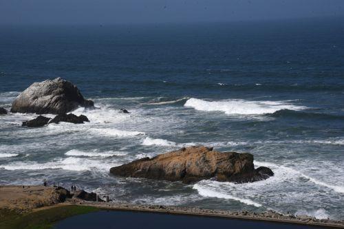 Ocean View San Francisco