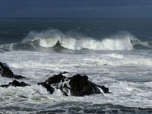 Ocean Wave Curl