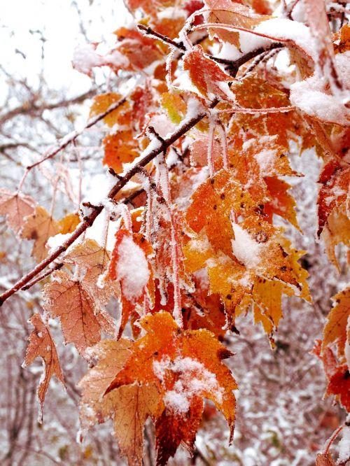 october winter strom
