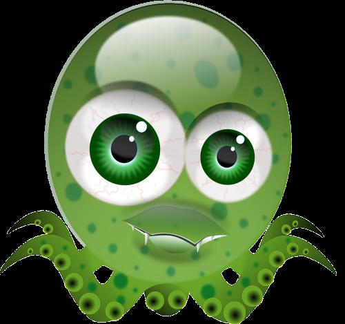 octopus molluscs cartoon