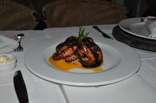 octopus  food  tentacles