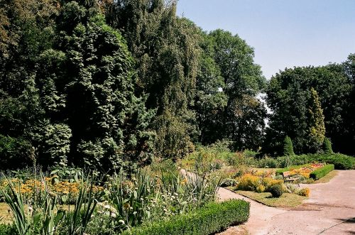 Botanic Garden 7