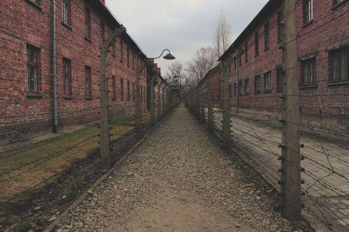 senas, plyta, gatvė, architektūra, lauke, auschwitz, koncentracijos stovykla, Lenkija, nazi, stovykla, Hitleris, holokaustas, kalėjimas, darbo stovykla, sunaikinimo stovykla, sienos, tvora, spygliuota viela, spygliuota viela, pavasaris, be honoraro mokesčio