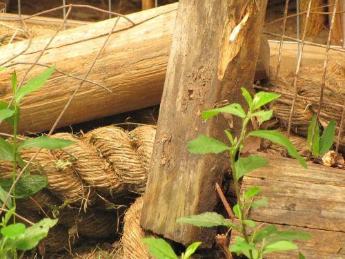 old rope wood