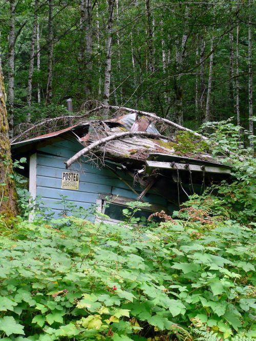 old damaged house