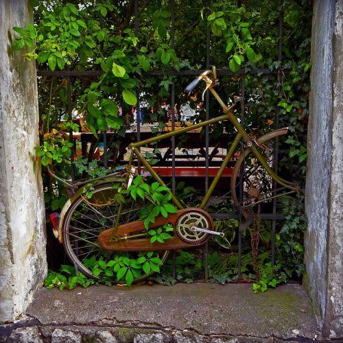 old bike rust