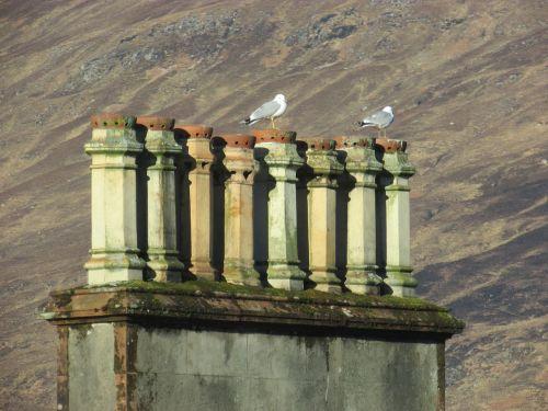 old chimney brickwork architecture