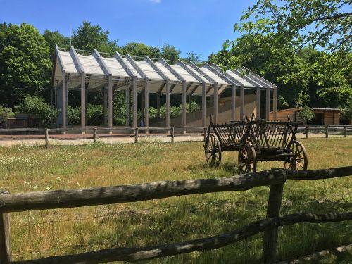 old coachman car wood meadow