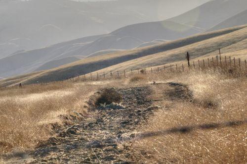 Old Dirt Path