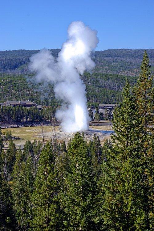 old faithful geyser overlook  geyser  steam