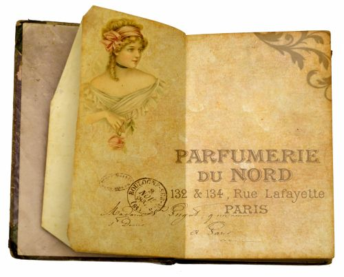 Old French Book
