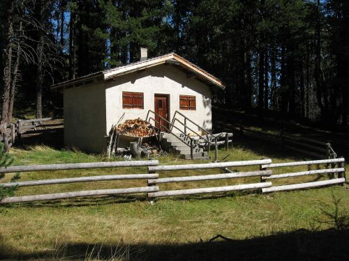 cabin forsthaus hunting lodge