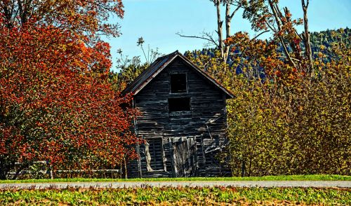 Old Leaning Shack