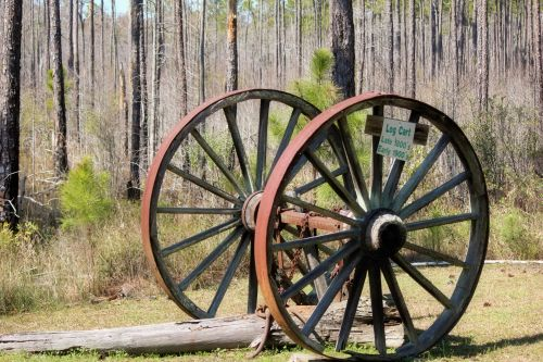 Old Log Cart Wheels