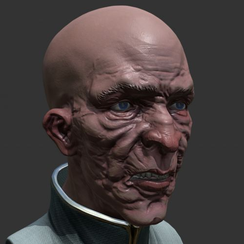Old Man Bust 3