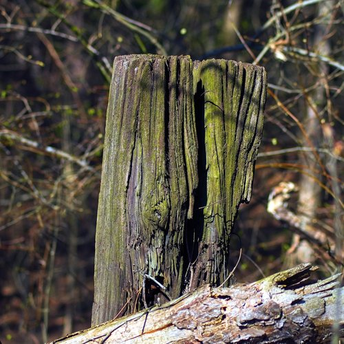 old post  fence  post