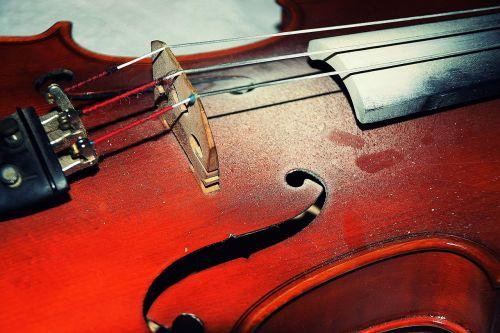 old violin string violin