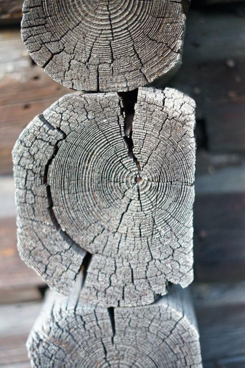 senoji mediena,namelis,spindulys,mediena,namas,senas,medinis,kaimas,mediena,pastatas,kaimiškas,siena,eksterjeras,natūralus,tradicinis,Šalis,kaimas,struktūra,kaimas,statyba