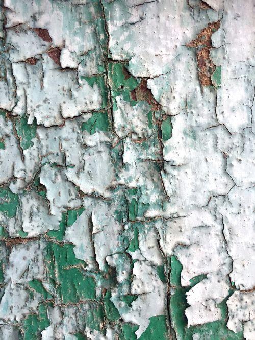 senoji mediena,dažytos,tekstūra,žalia ir balta,grubus,mediena,senas,lenta,modelis,Grunge,vintage,dažyti,ištemptas,dizainas,paviršius,fonas,kaimiškas,Senovinis,grungy,medinis,amžius,retro,mediena,spalva