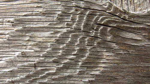 old wood board fibers